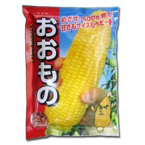 野菜の種/種子 おおもの・とうもろこし・スイートコーン 2000粒(大袋)|vg-harada