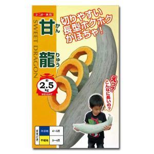 野菜の種/種子 甘龍・カボチャ 5粒 (メール便可能)|vg-harada