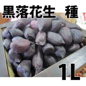 野菜・種/苗 黒落花生/立性落花生・落花生・ピーナッツ 生もの種 量り売り1L|vg-harada