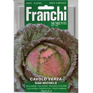 野菜の種/種子 サボイキャベツ・イタリア野菜 約8g (メール便可能)|vg-harada