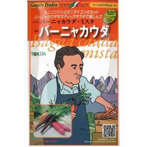 野菜の種/種子 バーニャカウダ・バーニャカウダー・ミスタ・イタリア野菜 45粒 (メール便発送)|vg-harada