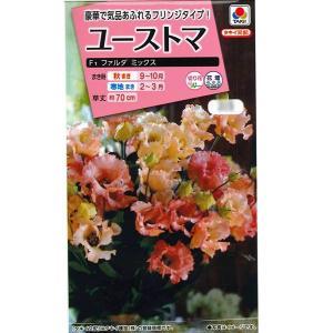 花の種 ユーストマ[F1 ファルダ ミックス] 15粒 (メール便可能)|vg-harada