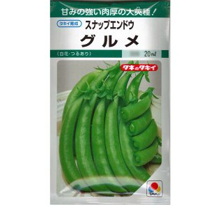 野菜の種/種子 スナップエンドウ グルメ えんどう 20ml(メール便発送)タキイ種苗|vg-harada