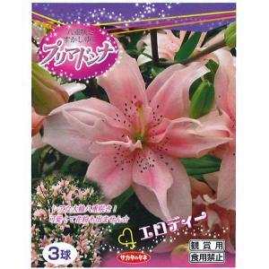 花・球根 八重咲きすかしゆりプリマドンナ[エロディー] 3球入|vg-harada