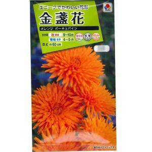 花の種 金盞花 [オレンジ ポーキュパイン] 5ml(メール便可能)|vg-harada