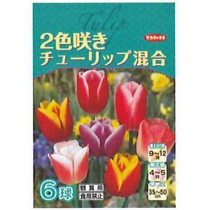花・球根 二色咲きチューリップ 2色咲き(混合)6球入[秋植え球根]|vg-harada