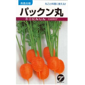 野菜の種/種子 パックン丸・ニンジン  にんじん 20ml (メール便発送)|vg-harada