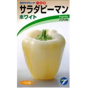 野菜の種/種子 サラダピーマン ホワイト パプリカ 15粒 (メール便可能)|vg-harada