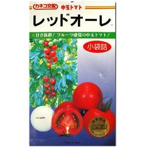 野菜の種/種子 レッドオーレ・トマト 1000粒 (メール便可能/大袋)|vg-harada