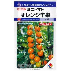 野菜の種/種子 オレンジ千果・ミニトマト 18粒 (メール便可能)タキイ種苗|vg-harada