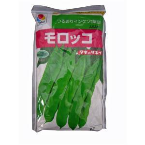 野菜の種/種子 モロッコ・つるありいんげん 1L  (大袋)タキイ種苗|vg-harada