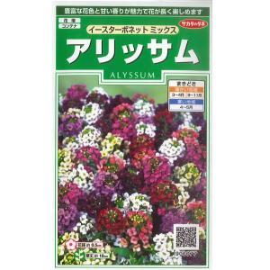 花の種 アリッサム[イースターボネットミックス] 0.05ml(メール便可能)|vg-harada