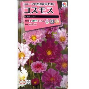 花の種 コスモス[ダブルクリック] 2.5ml(メール便発送)|vg-harada