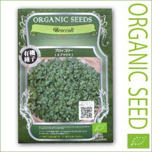 有機種子/野菜の種 ブロッコリー(スプラウト)14g(メール便発送)|vg-harada
