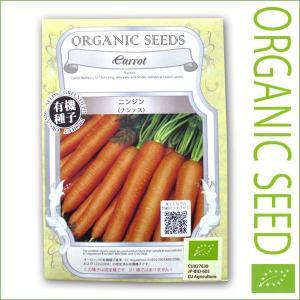 有機種子/野菜の種 ニンジン(ナンテス) 1.2g(メール便可能)|vg-harada
