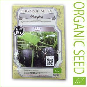 有機種子/野菜の種 かぼちゃ(黒皮栗) 15粒(メール便可能)|vg-harada
