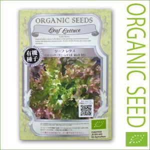 有機種子/野菜の種 リーフレタス(ロロロッサ/サニーレタス系 緑&赤 混色) 0.9g(メール便可能)|vg-harada