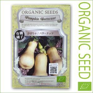 有機種子/野菜の種 かぼちゃ/バターナッツ 2.5g(メール便可能)|vg-harada
