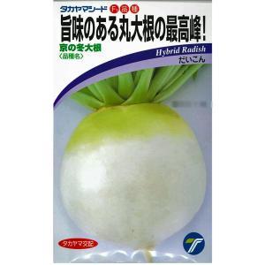 野菜の種/種子 京の冬大根・だいこん 8.4ml(メール便可能)|vg-harada