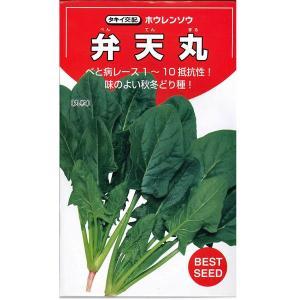野菜の種/種子 弁天丸・ほうれんそう ほうれん草 法蓮草 30ml(メール便可能)タキイ種苗|vg-harada