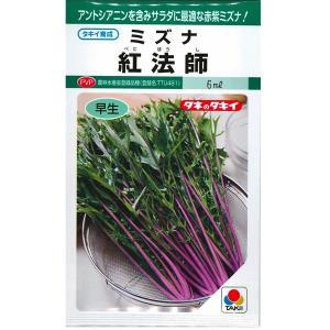 野菜の種/種子 ミズナ紅法師・水菜 6ml(メール便発送)タキイ種苗|vg-harada