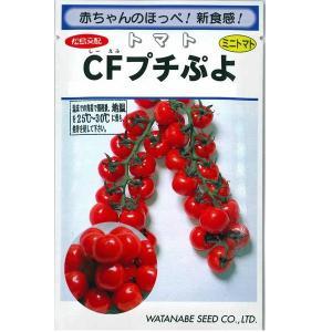 野菜の種/種子 CFプチぷよ・ミニトマト とまと  ペレット種子 10粒 (メール便可能)|vg-harada