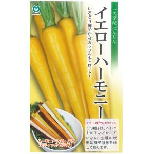 野菜の種/種子 イエローハーモニー ニンジン  にんじん キャロット 人参 ネオコート種子  340粒 (メール便可能)|vg-harada