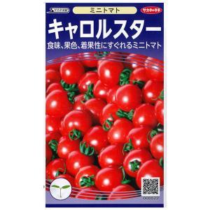 野菜の種/種子 キャロルスター  ミニトマト  15粒 (メール便可能)サカタのタネ|vg-harada