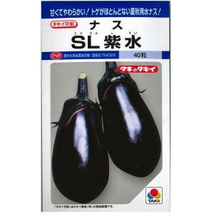 野菜の種/種子 SL紫水・ナス 茄子 40粒(メール便可能)タキイ種苗|vg-harada