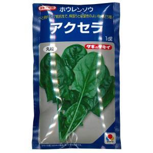 野菜の種/種子 アクセラ・ほうれんそう ホウレンソウ 法蓮草 1dl(メール便発送)タキイ種苗|vg-harada