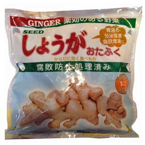 数量限定!野菜・種/苗 大ショウガ/おたふく生姜 お多福 しょうが・生もの種 種生姜 1kg|vg-harada