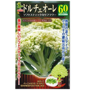 野菜の種/種子 ドルチェオーレ・ソフトスティックカリフラワー 0.5ml (メール便可能)|vg-harada