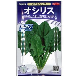 野菜の種/種子 オシリス・ほうれんそう ホウレンソウ 法蓮草 28ml (メール便可能)サカタのタネ|vg-harada