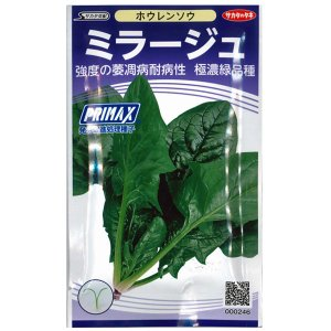 野菜の種/種子 ミラージュ・ほうれんそう ホウレンソウ 法蓮草 30ml (メール便可能)サカタのタネ|vg-harada