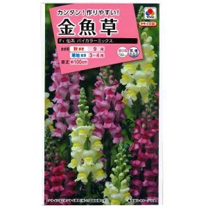 花の種 金魚草[F1 仙系 バイカラーミックス] 0.07ml(メール便発送)|vg-harada
