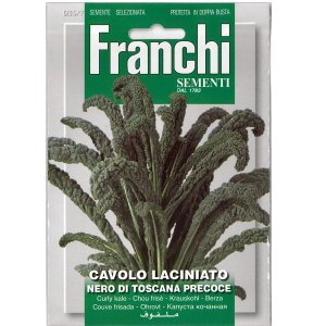 野菜の種/種子 カーボロネロ(黒キャベツ)・トスカーナ・イタリア野菜 8g (メール便可能)|vg-harada