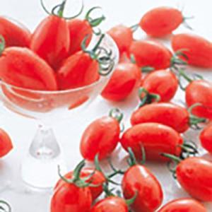 野菜の種/種子 アイコ・ミニトマト ペレット200粒 (メール便可能/大袋)サカタのタネ|vg-harada