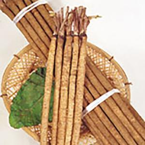 野菜の種/種子 みとよ白肌 ごぼう 20ml(メール便可能)サカタのタネ|vg-harada