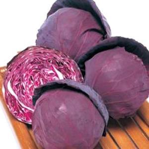 野菜の種/種子 パワールビー 赤キャベツ 2000粒(メール便可能)タキイ種苗|vg-harada