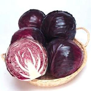 野菜の種/種子 中生ルビーボール・レッドキャベツ 0.7ml(メール便可能)タキイ種苗|vg-harada