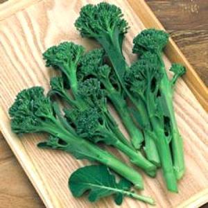 野菜の種/種子 グリーンボイス・茎ブロッコリー 1ml(メール便発送)タキイ種苗|vg-harada
