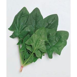 野菜の種/種子 おかめ・ほうれんそう ほうれん草 法蓮草 1L (大袋)タキイ種苗 vg-harada