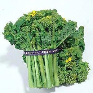 野菜の種/種子 食用 菜の花・ナバナ・菜花 1L (大袋)タキイ種苗|vg-harada