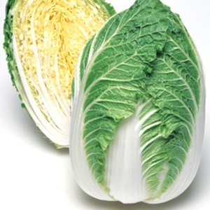 野菜の種/種子 きらぼし90・ハクサイ・白菜 0.9ml(メール便発送)タキイ種苗|vg-harada