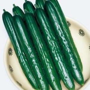 野菜の種/種子 Vアーチ・きゅうり キュウリ 350粒(メール便発送/大袋)タキイ種苗|vg-harada