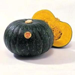野菜の種/種子 えびす・カボチャ 500粒(大袋)タキイ種苗|vg-harada