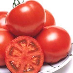 野菜の種/種子 CF桃太郎ヨーク・トマト 1000粒(メール便可能/大袋)タキイ種苗|vg-harada
