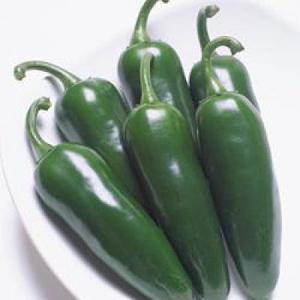 野菜の種/種子 ピー太郎・ピーマン 500粒(メール便可能)タキイ種苗|vg-harada