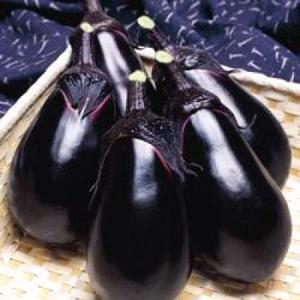 野菜の種/種子 SL紫水・ナス 茄子 1000粒(メール便可能/大袋)タキイ種苗|vg-harada