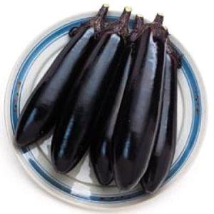 野菜の種/種子 筑陽・ナス 茄子 1000粒(メール便可能/大袋)タキイ種苗|vg-harada